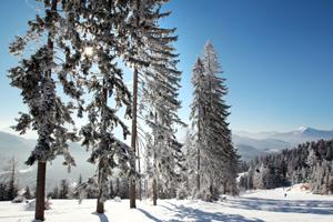 Winterspaziergang - Foto: WeinFranz